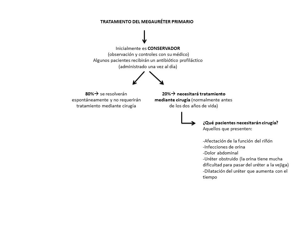 Figura 6. Esquema de tratamiento del megauréter primario.